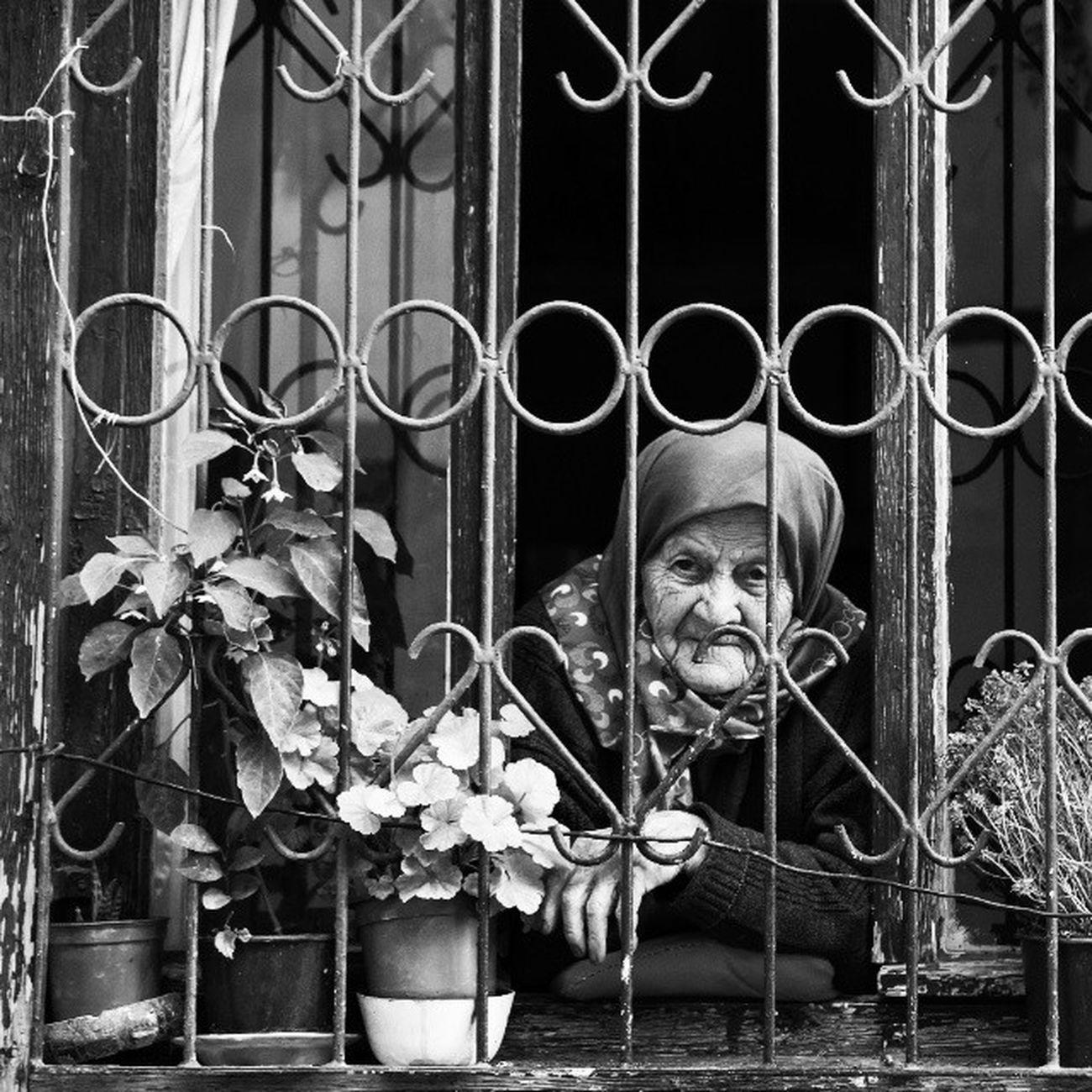 Oldwoman Pencere Window Saksi flowers siyahbeyaz blackandwhite blackwhite