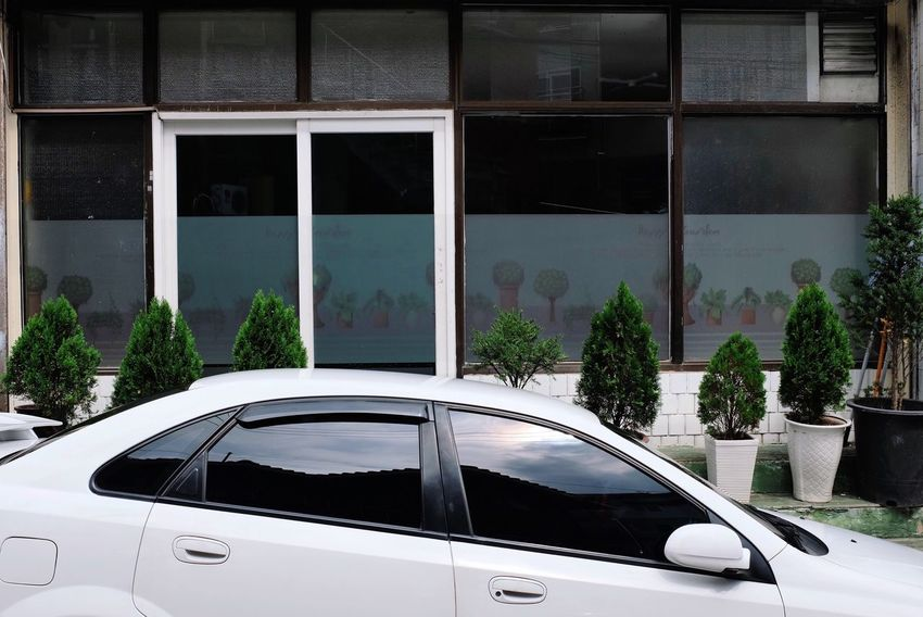 Glass - Material Transportation Car Mode Of Transport Window Plant Transparent Land Vehicle Growth Building Exterior Outdoors Day In Front Of No People Vacations