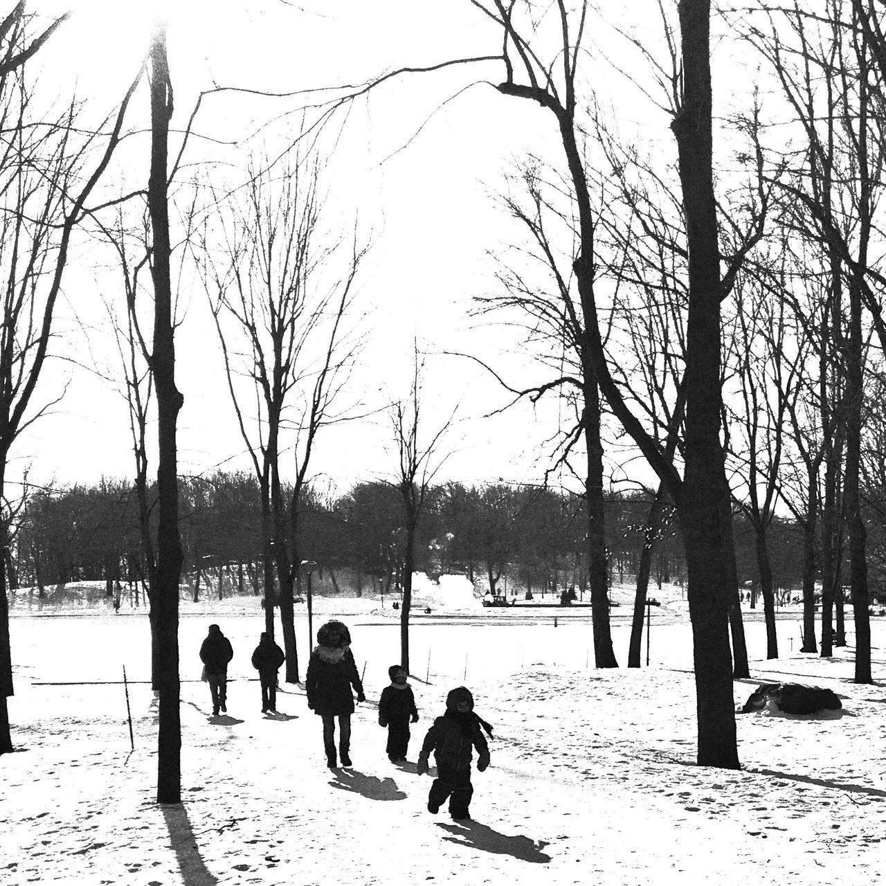 -14 Winter Cold Temperature Tree Snow Leisure Activity Frozen The Week Of Eyeem Blackandwhite Bw_collection