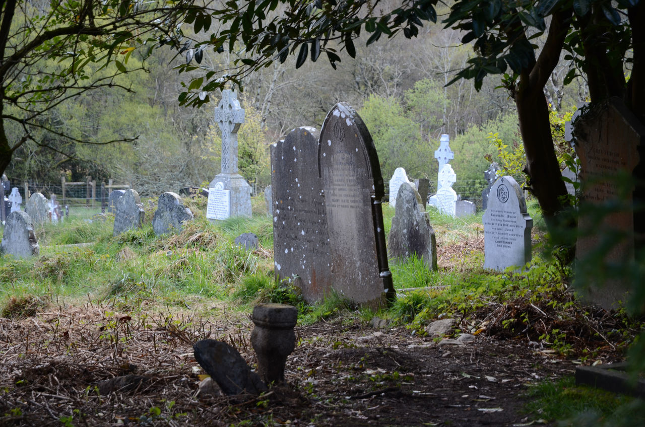 Beautiful stock photos of death, Cemetery, Day, Death, Memories