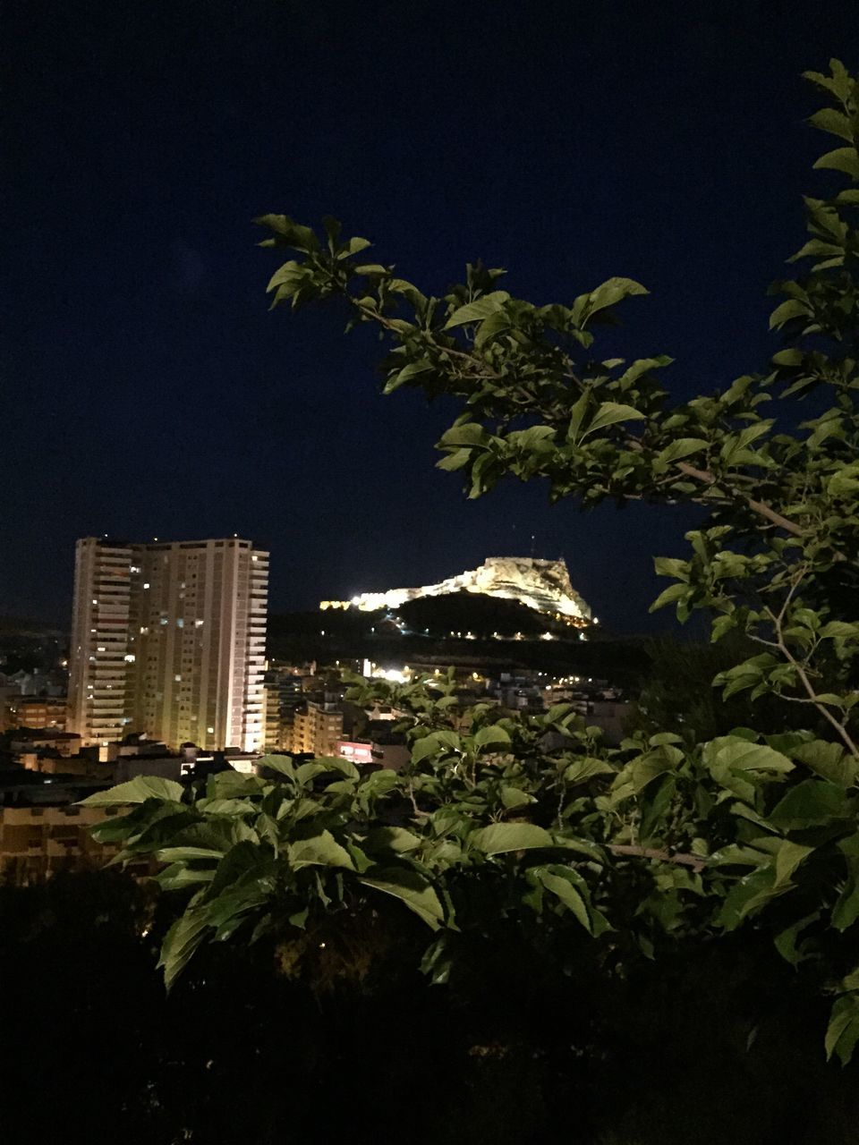 architecture, growth, city, night, urban, no people, cityscape, tree, building exterior, outdoors, modern, nature, high, sky