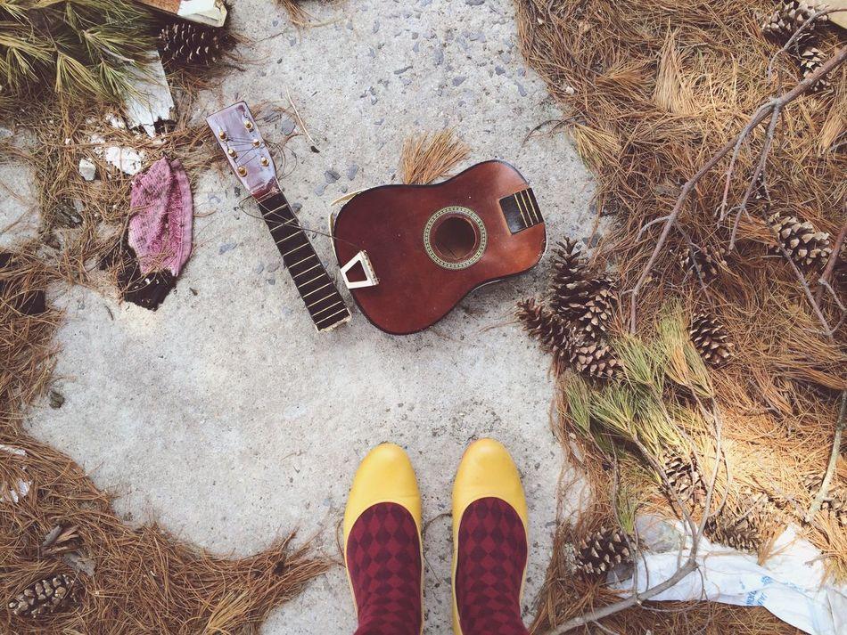 Beautiful stock photos of guitar, Broken, Day, Destruction, Guitar