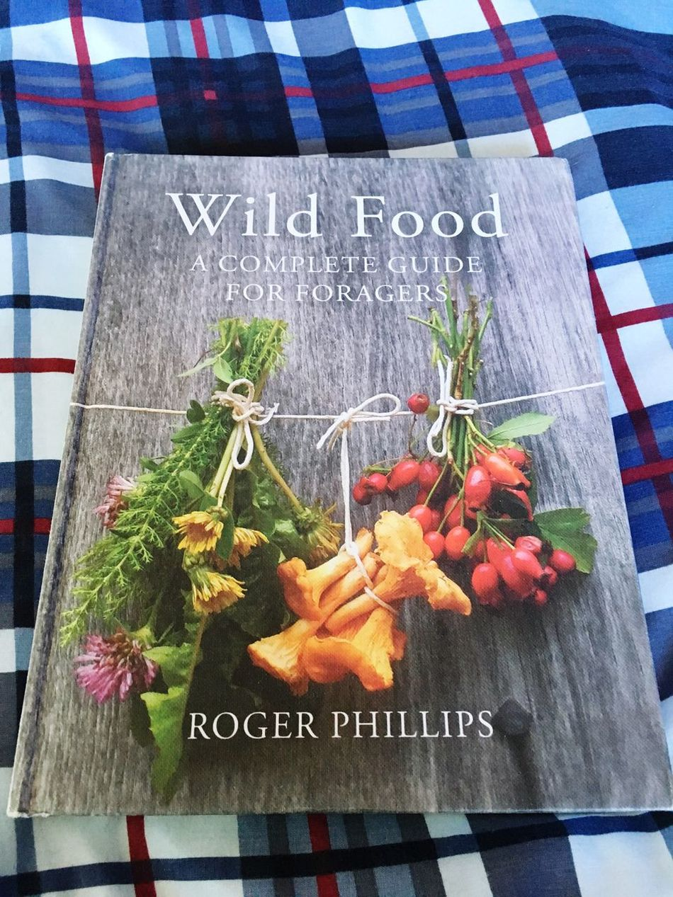 "Wild Food Book ""For Sale"", Excellent Condition Healthy Eating Foraging Nature Vegetables Herbs Outdoor Photography Text Western Script Vegetable Freshness Food And Drink No People Communication Handwriting  Indoors  Food Day Price Tag Close-up (null)Ready-to-eat Farmtotable"
