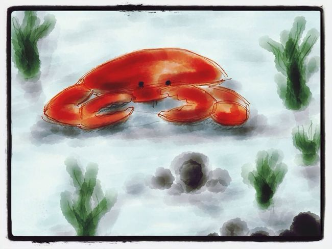 Long time no Sketch , Crab , Paperapp