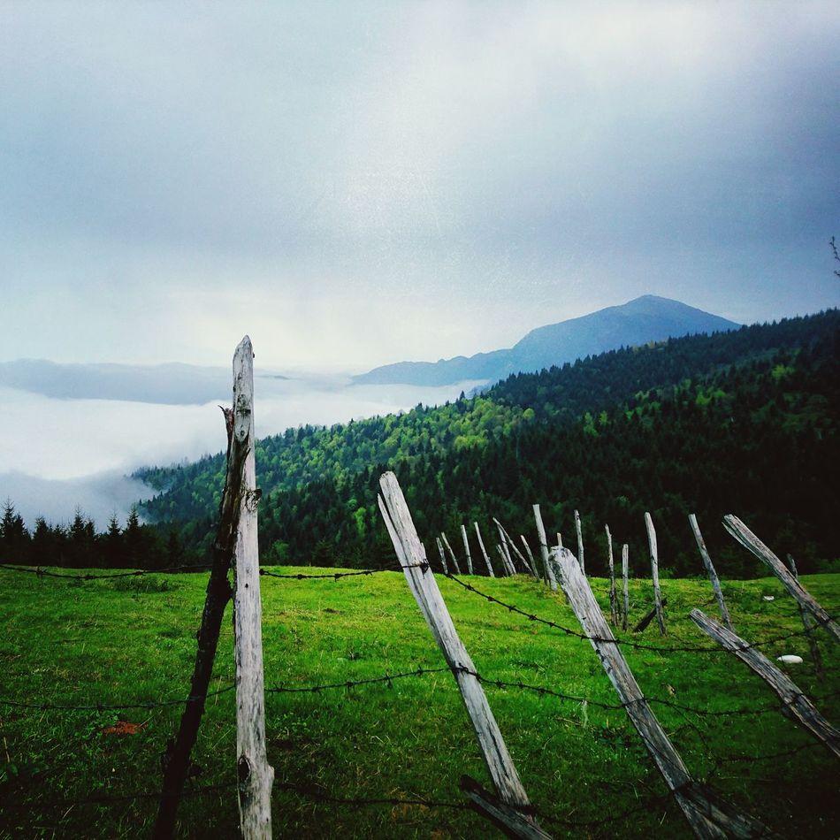 Wildlife & Nature Giresun Dereli Karatepe Bektaşyaylası Plateau