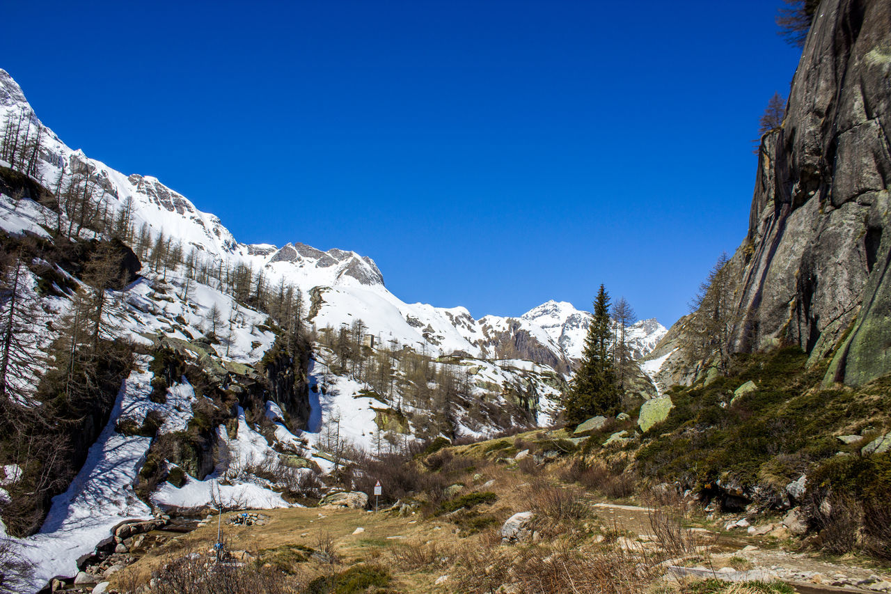 nature, beauty in nature, snow, winter, tranquility, cold temperature, mountain, tranquil scene, rock - object, outdoors, day, scenics, clear sky, blue, no people, low angle view, tree, sky