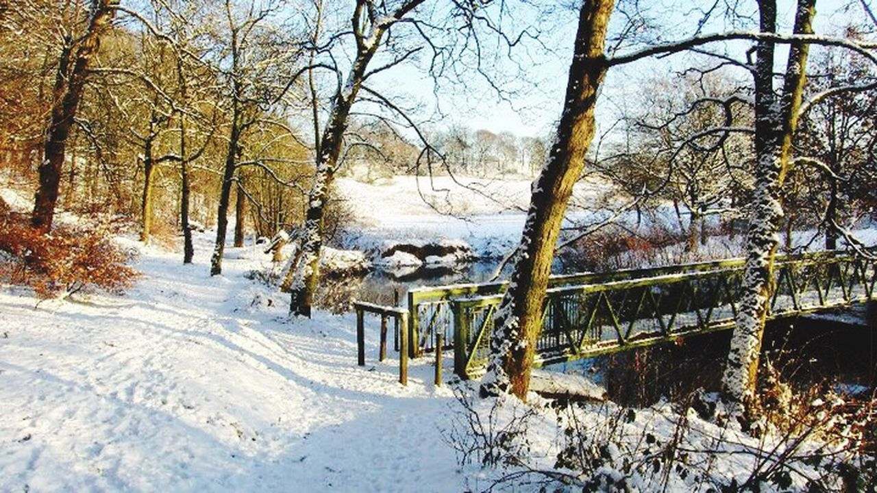 My Winter Favorites Snow ❄ Rochdale Nature Water River Queenspark Bridgetonowhere