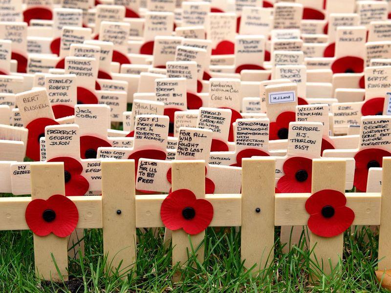 Remembrance Sunday. London. 12/11/2017 Veterans Photojournalism Armistice Poppyday Stevesevilempire Remembranceday Remembrance Sunday Royal British Legion Remembrance London News Olympus LONDON❤ Steve Merrick Zuiko London