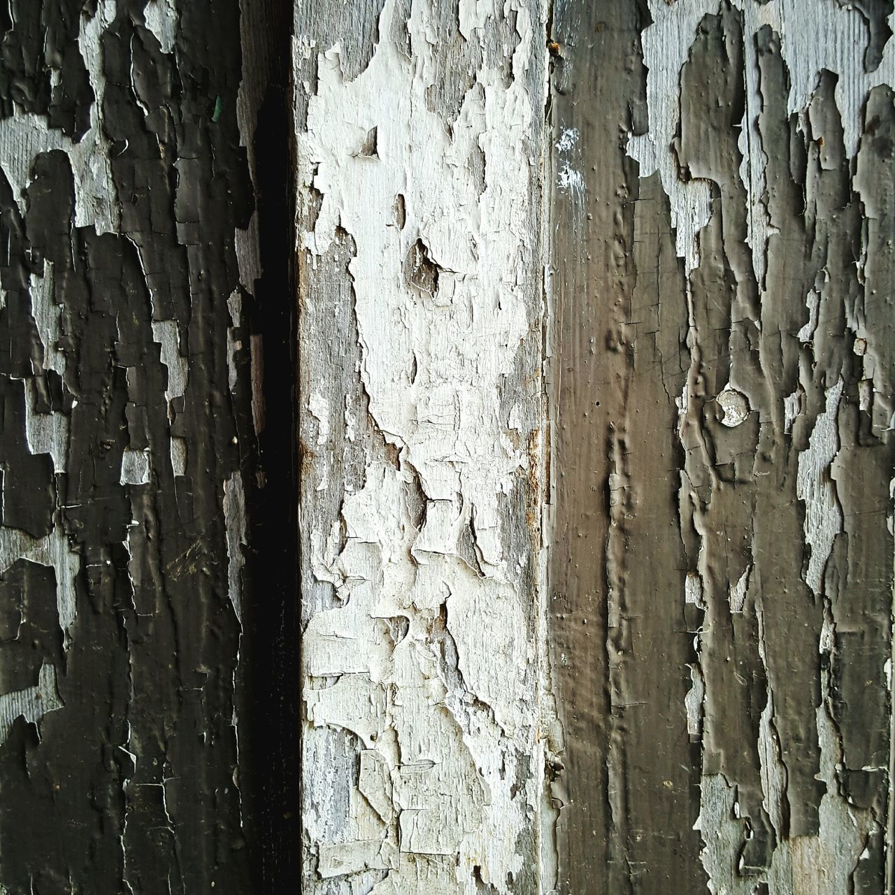 Weathered painted wood Full Frame Backgrounds Textured  Day Weathered Built Structure No People Paint Close-up Architecture Outdoors Vintage Vintage Textured  Pattern Architecture Garden Photography Paint Decay Weathered Building Exterior