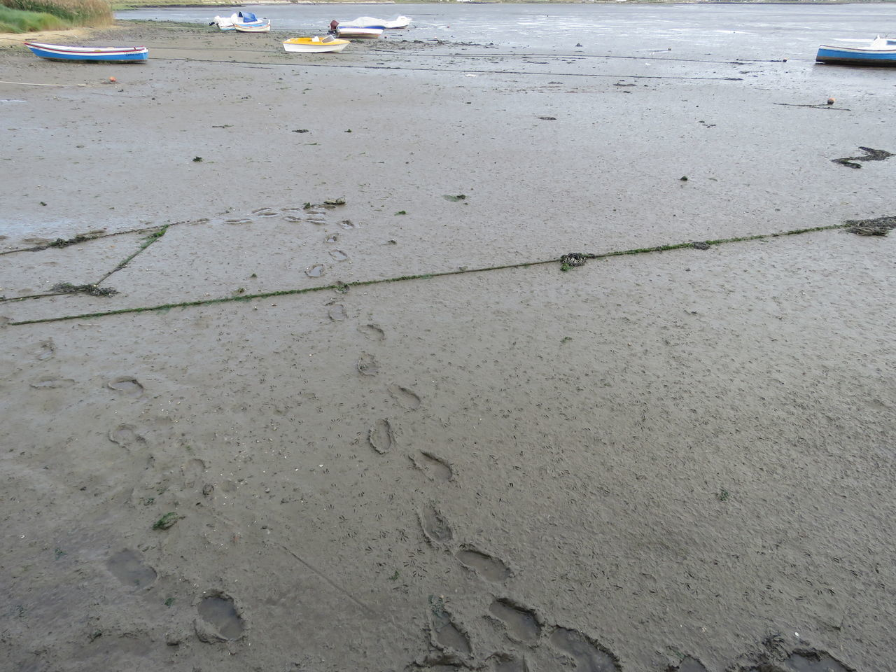 wet, sand, street, day, no people, outdoors, beach, water, puddle, nature, close-up