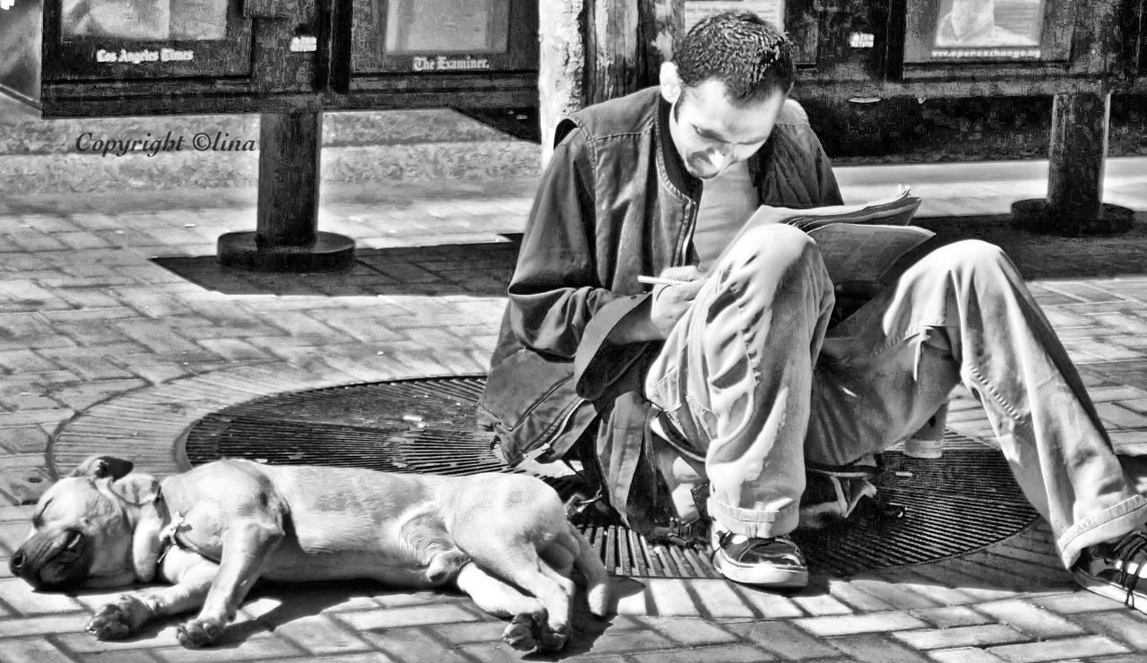 dog, pets, animal themes, one animal, domestic animals, full length, outdoors, mammal, day, young adult, one person, sitting, building exterior, city, people, adult