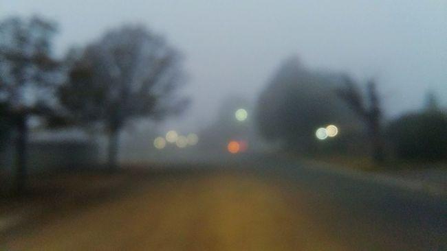 Misty Morning Misty Day Misty Sunrise Misty Road Misty Sky Misty Misty Everything Foggy Foggy Morning Foggy Day Foggy Weather Fog OH Fog!! 😅😆😂 Fog In The Trees Foggy Landscape Foggy Everything
