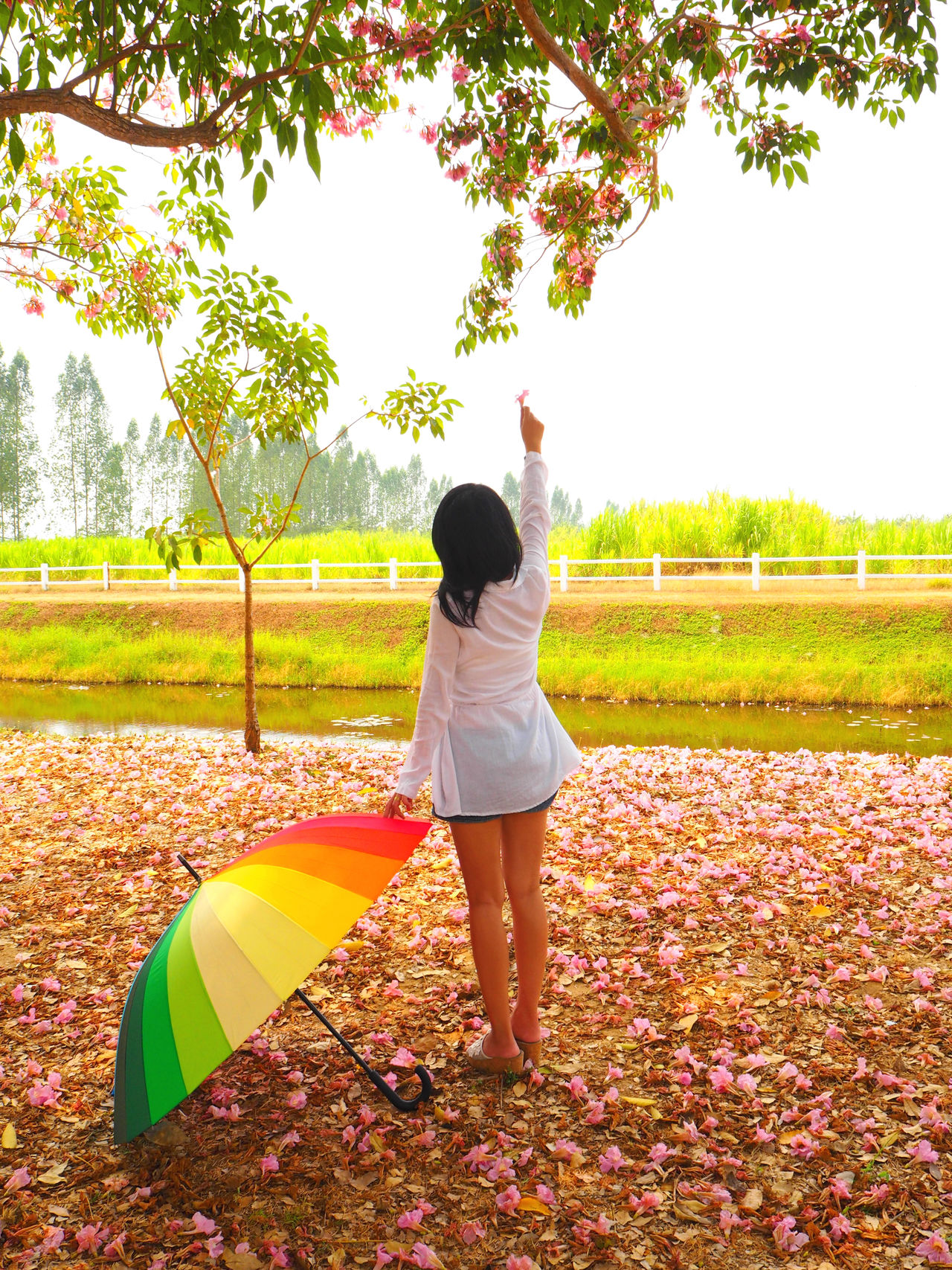 ☂Pink world☂ Feel The Journey Casual Clothing Exceptional Photographs The Great Outdoors With Adobe People Holding Colorsplash Leisure Activity lLifestyles Natural Natural Beauty Spotted In Thailand Pastel Power The Great Outdoors - 2016 EyeEm Awards Pink Color Travel Natural Light Portrait Tadaa Community Everything In Its Place Umbrella The Portraitist - 2016 EyeEm Awards Let Your Hair Down Yeah Springtime! Young Women Uniqueness Women Around The World Millennial Pink