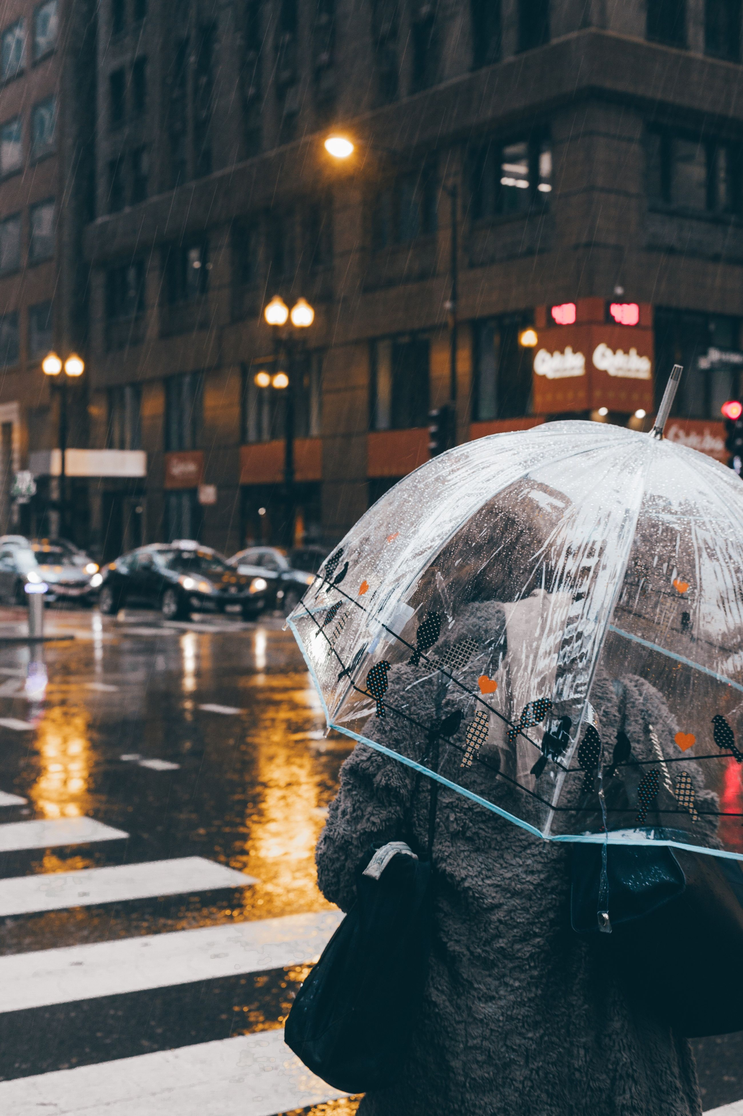 rain, weather, wet, street, rainy season, night, car, winter, city, city street, city life, cold temperature, protection, outdoors, raindrop, snow, illuminated, building exterior, built structure, road, architecture, snowing, one person, under, adult, people