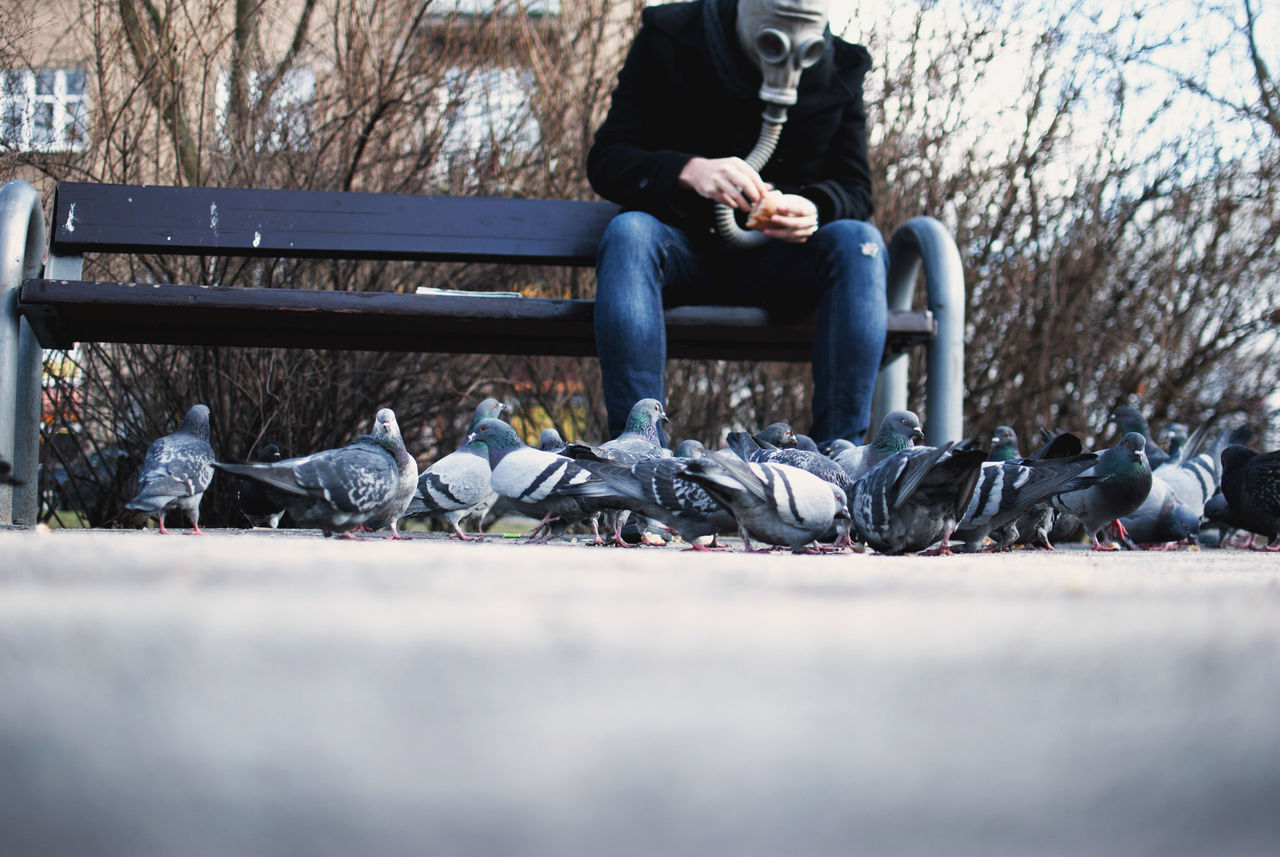 Adult Adults Only Casual Clothing Clean Air Day Discover Your City Editorial  Environment Full Length Gas Mask Journalism Lifestyles Light And Shadow Men One Man Only One Person Only Men Outdoors People Pollution Pollution In My World Sitting The Week Of Eyeem