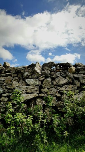 Drystone wall Scenics Tranquil Scene Tranquility Rock Formation Cloud - Sky Geology Growth Non-urban Scene No People Yorkshire Dales Agriculture Farmland Farming Day Sky Cloud