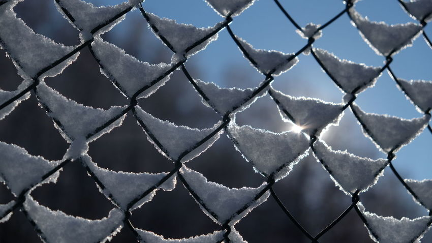AI Now! Chainlink Fence Metal No People Full Frame Pattern Close-up Day Outdoors