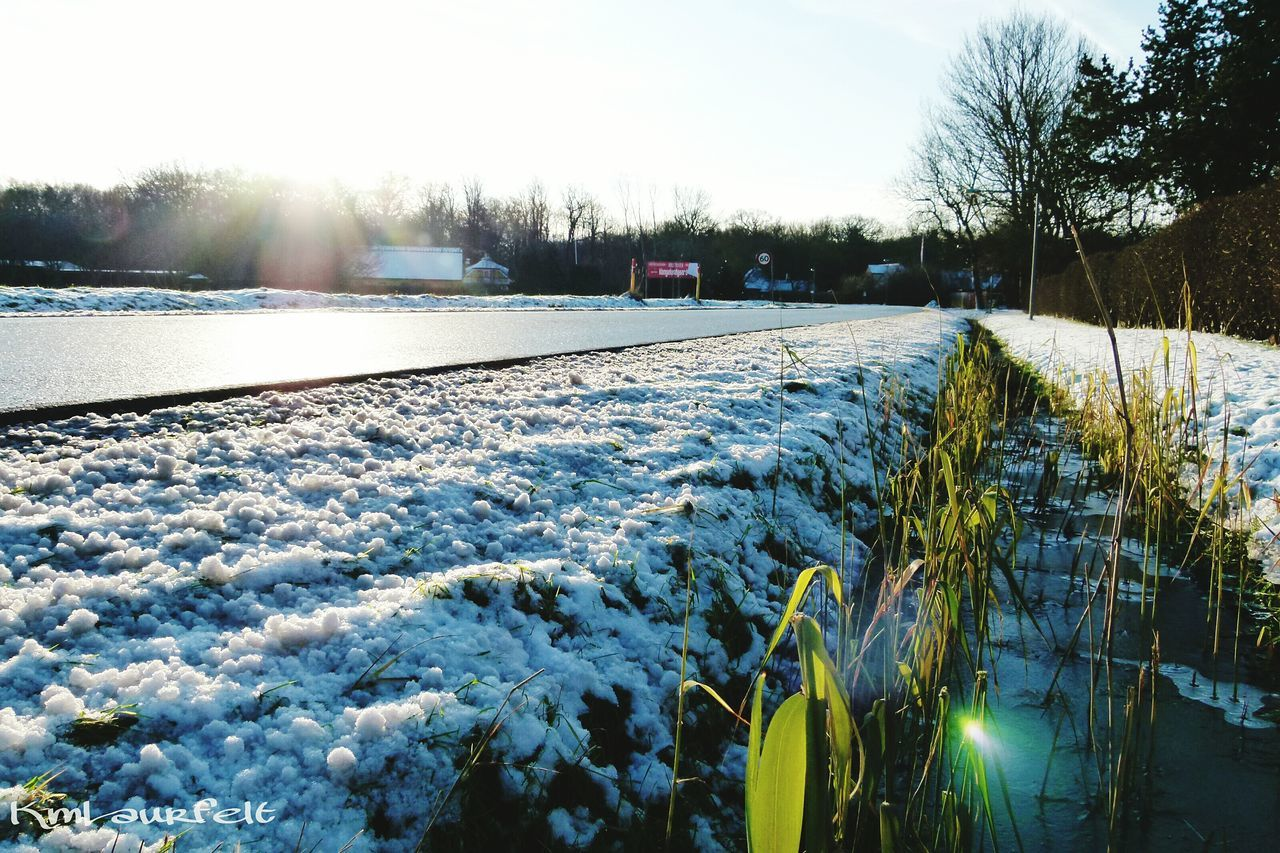 winter, cold temperature, snow, nature, frozen, weather, outdoors, ice, tree, field, no people, tranquility, day, beauty in nature, tranquil scene, scenics, landscape, sky