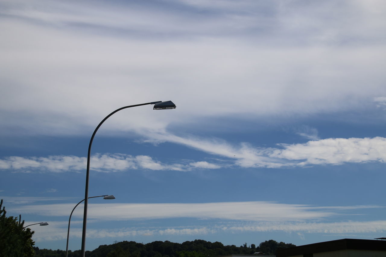 cloud - sky, sky, one animal, street light, day, low angle view, no people, cable, animals in the wild, nature, bird, outdoors, technology, animal themes