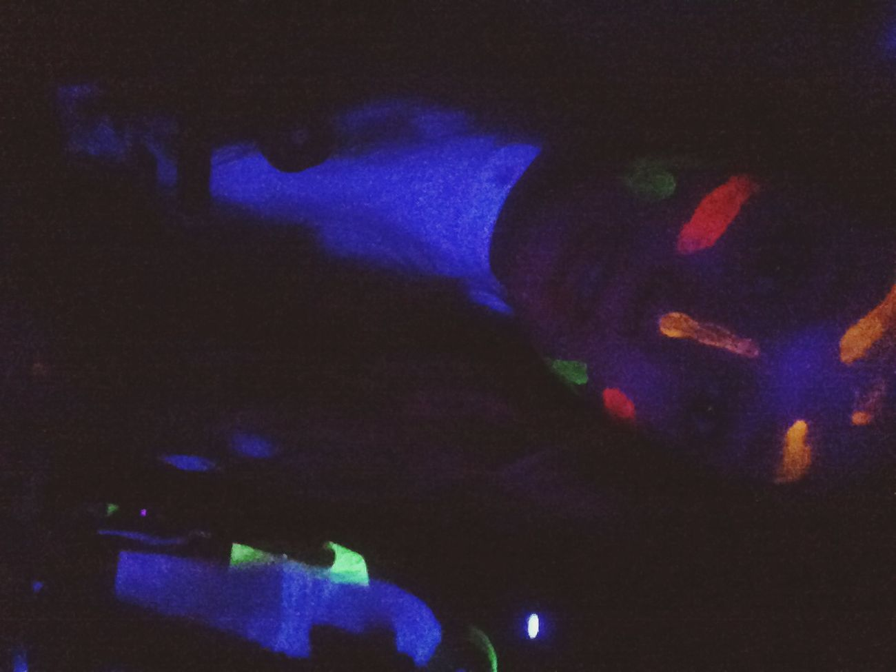 Glow paint party while bringing in the new year