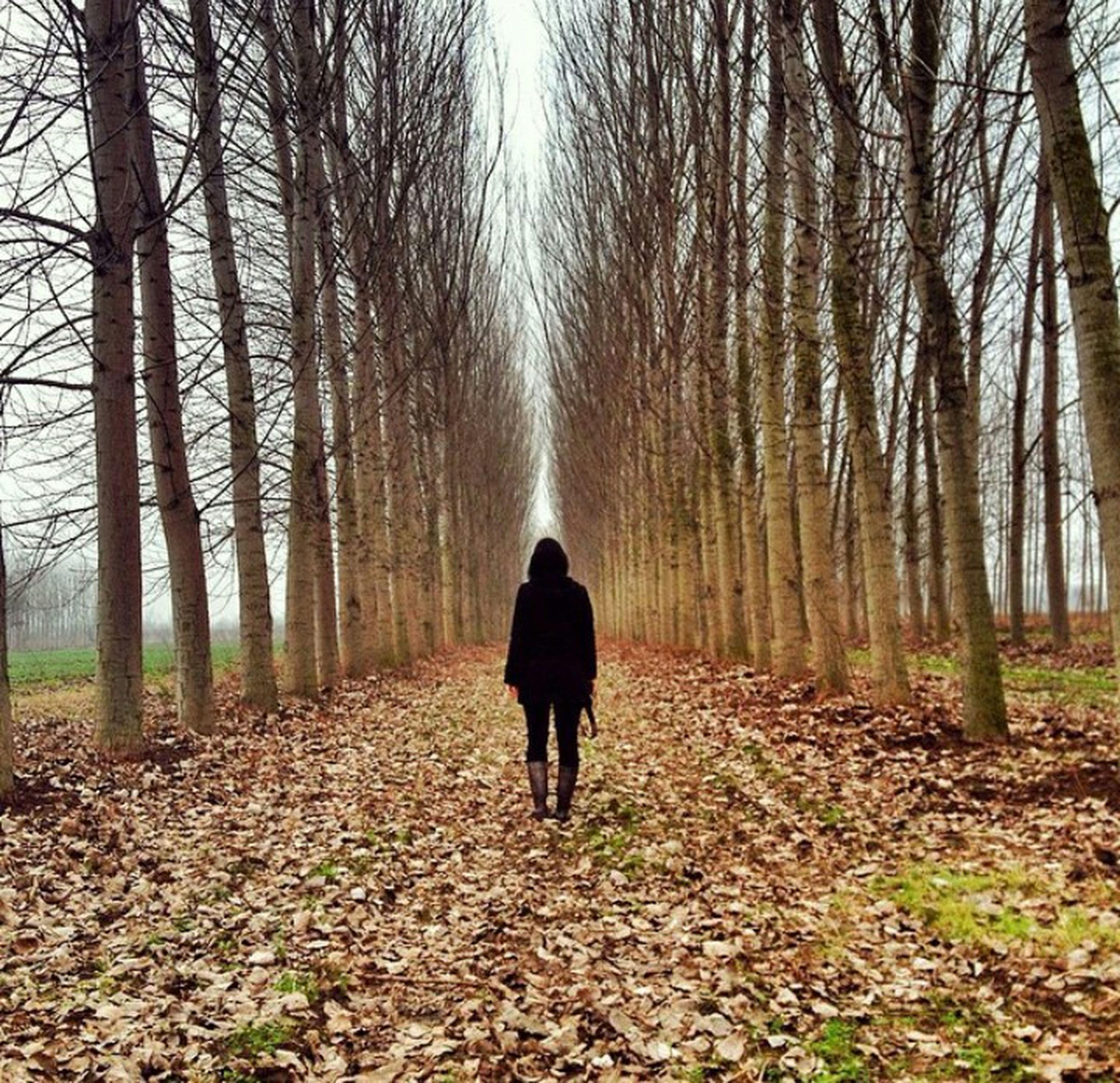 Mersin Elvanlı Orman Yürüyüş Huzur Doğalyaşam Photography AĞA