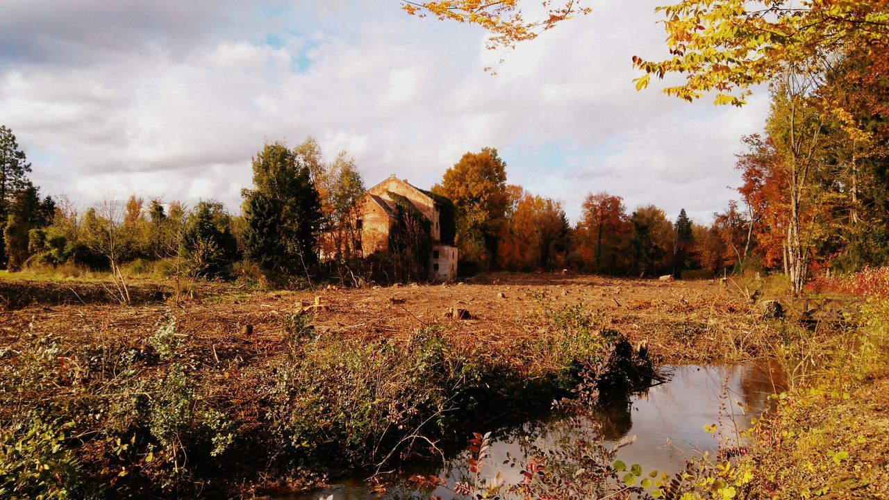Made by Sony Xperia M4 Aqua Abandoned Building Arboretum Autumn Autumn Colors Autumn🍁🍁🍁 Lake Landscape River Szombathely Tree Trees