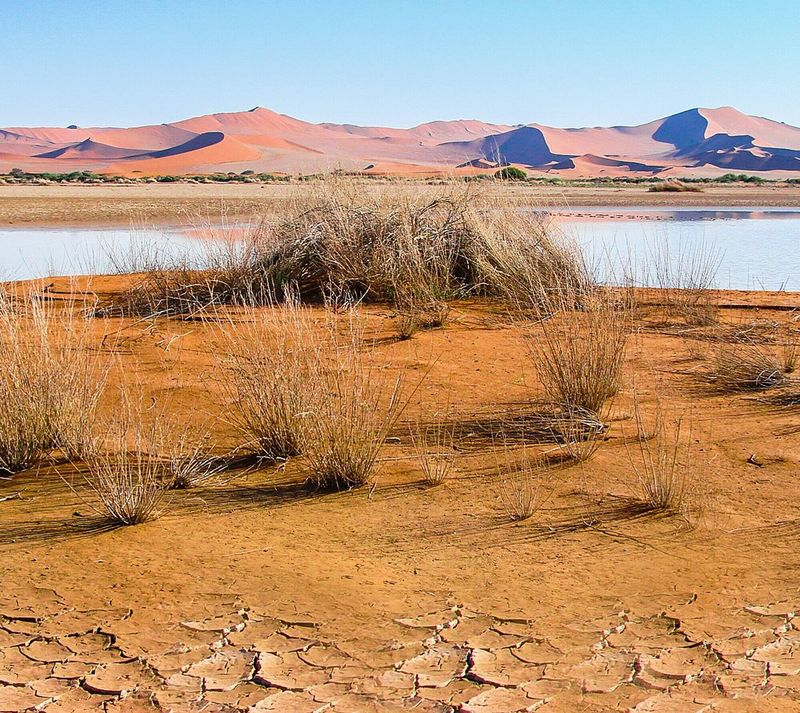 Scenics Sand Dune Sand Landscape Tranquility Beauty In Nature Arid Climate Remote Dry Arid Landscape Namib Desert Namibia Tranquil Scene Namib Dunes Desert Nature The Great Outdoors - 2016 EyeEm Awards