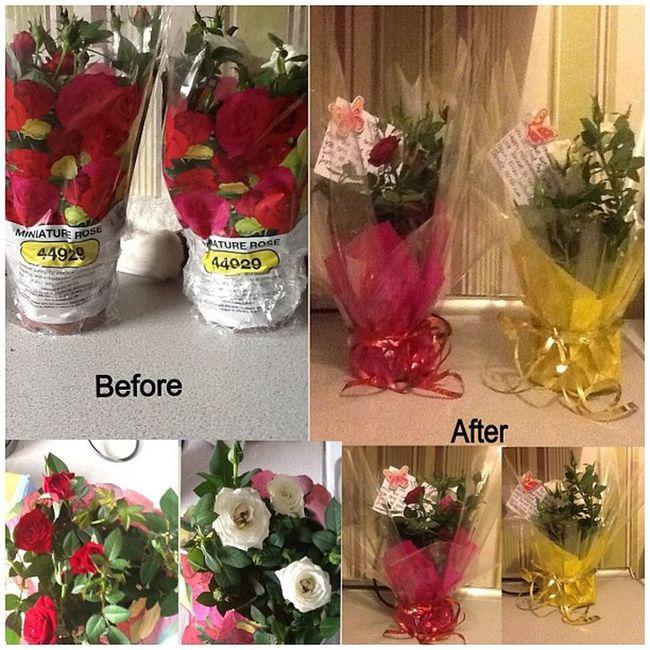 No filter Flowers Teachers Pressies Leaving bestteacherssadguttedhappyteamcreativeinstamoodinstadailyworkthanksmumforthehelpboughtflowersdecortedbyhandlikeforlikelfllike4likel4llikebacalways