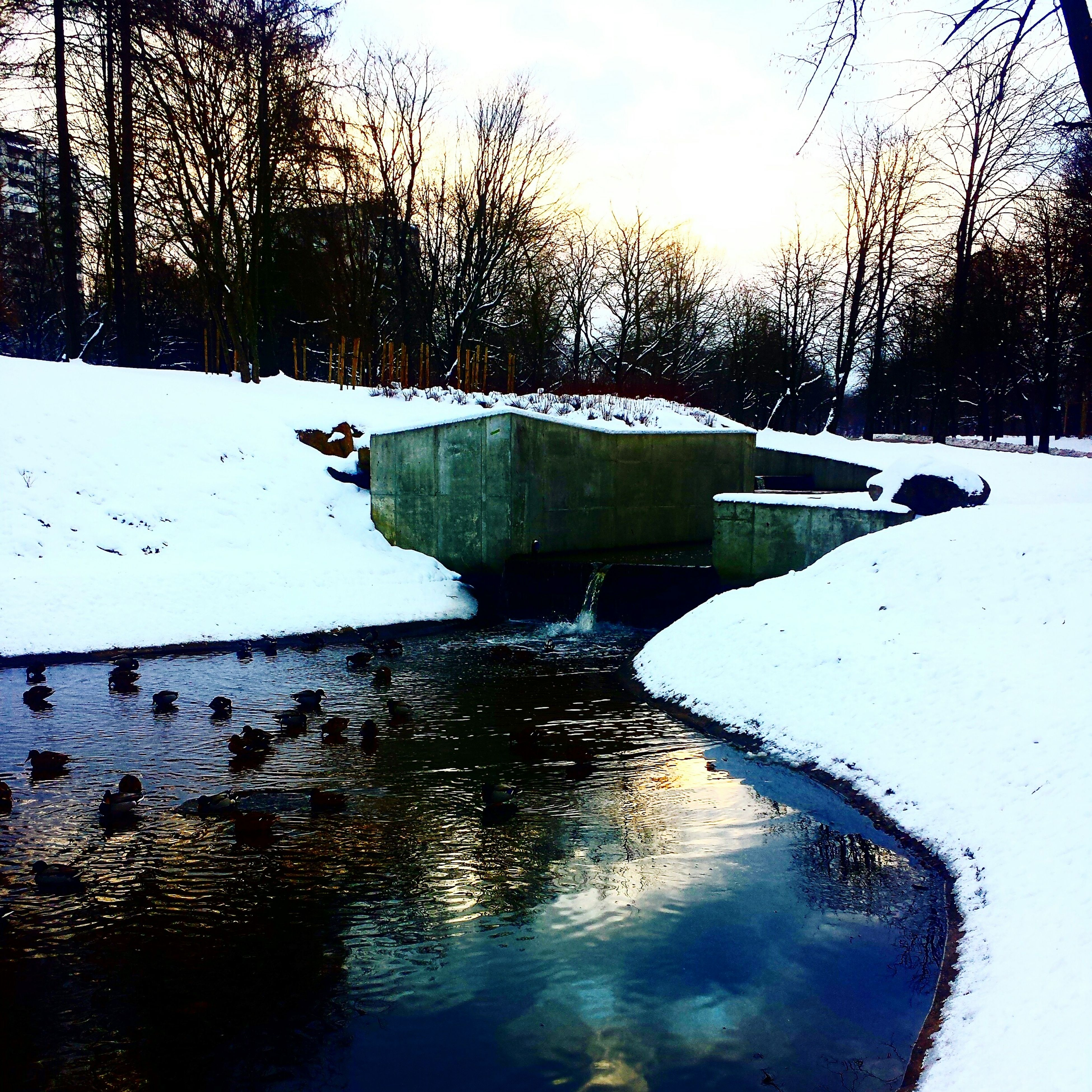 water, reflection, tree, sky, lake, snow, winter, cold temperature, tranquility, nature, tranquil scene, season, built structure, river, beauty in nature, fountain, day, scenics, outdoors, puddle