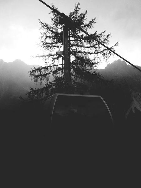 Croda Rossa Sexten Sestovalpusteria Blackandwhite Sexten Dolomites Dolomites, Italy Black And White Black & White Blackandwhite Photography Black And White Photography Monochrome Silhouette Tree Nature No People Beauty In Nature Mountain Sky Tranquility Day Scenics Growth Landscape Outdoors Branch
