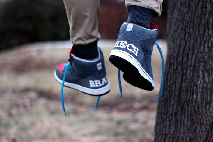 Brain wreck Nike Nikesb Stashedboxes Kicksonfire Sbcollector Complexkicks