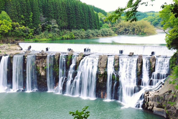 Water Tree Motion Nature River Waterfall Outdoors Day Beauty In Nature No People Japan Canon6d Ooita Chindafalls