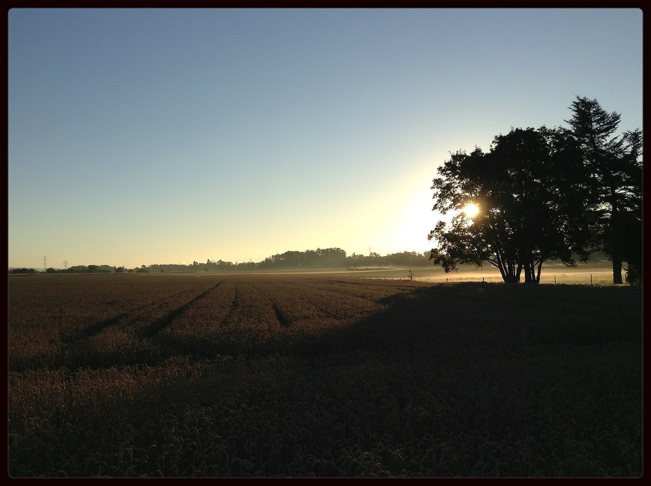 Good Morning! Sunrise EyeEm Nature Lover The Purist (no Edit, No Filter)