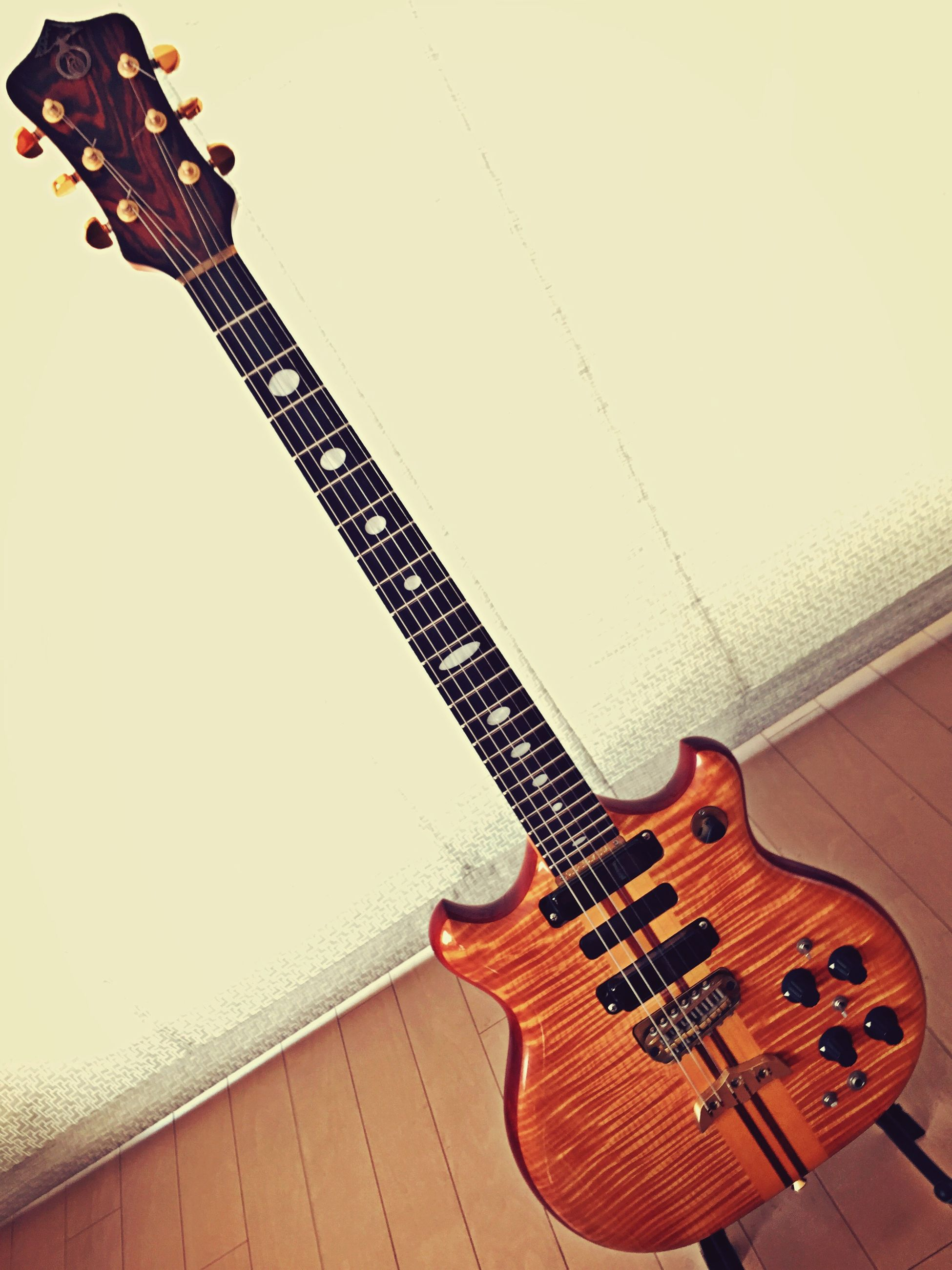 Musical Instruments Guitar Alembic Guitar Strings Studio Shot Music Is My Life Taking Photos