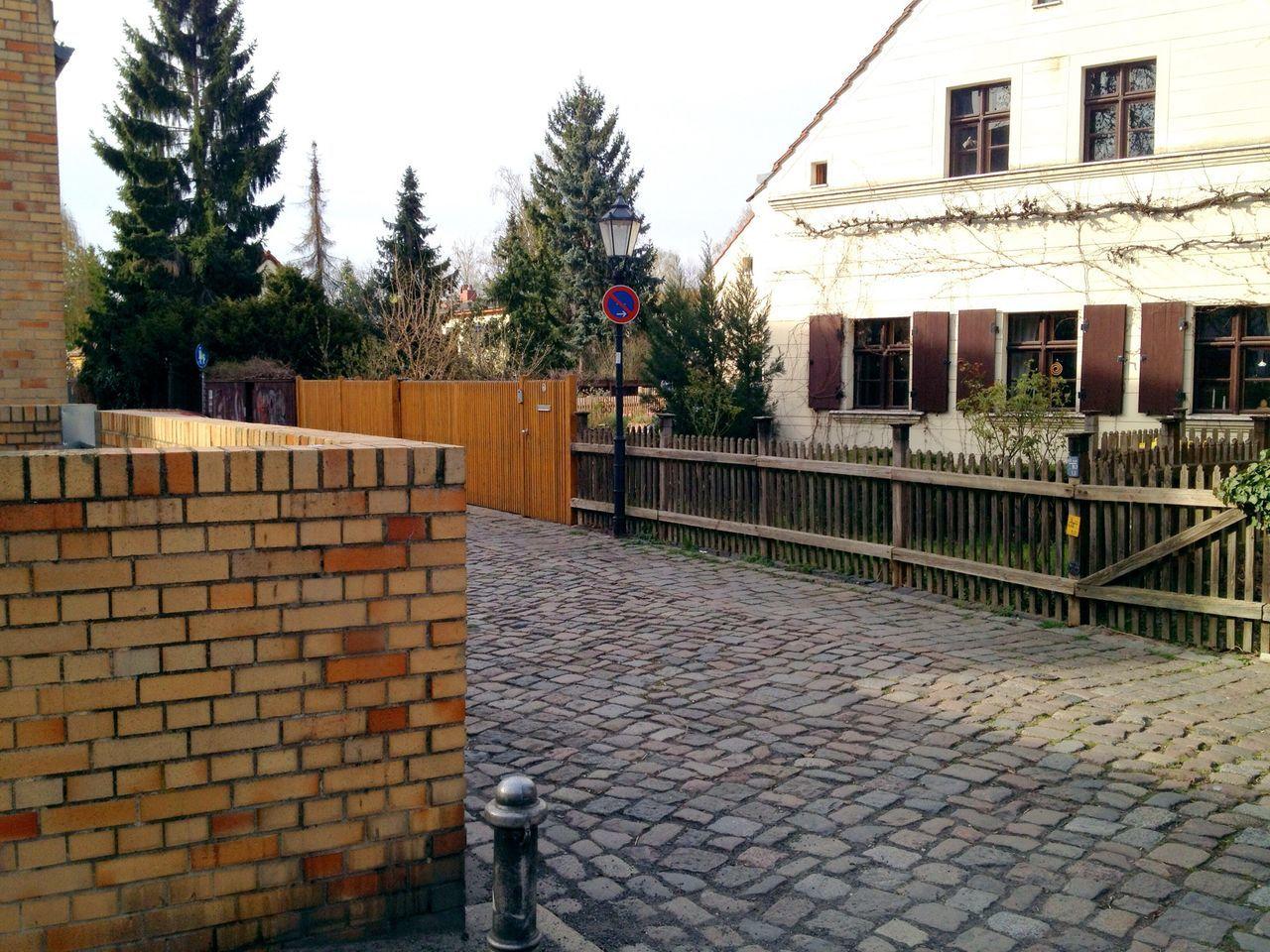 Beautiful stock photos of berliner mauer, Architecture, Building Exterior, Cobblestone, Coniferous Tree