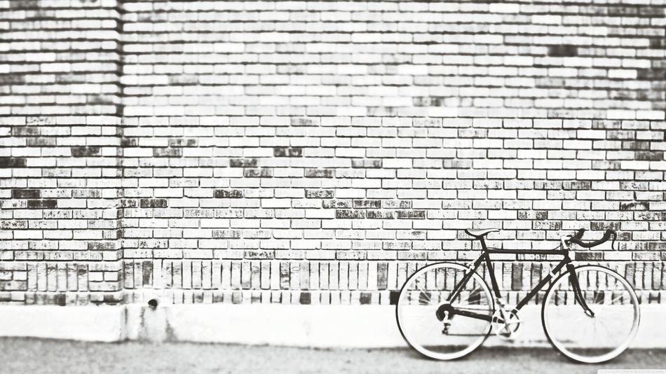 Bike Hipster Capa Filter