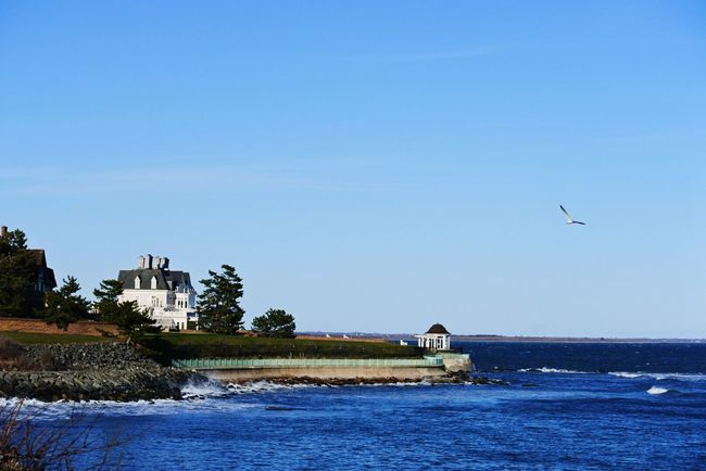 On The Water Newport Rhode Island SEAGULL IN FLIGHT Blue Mansion Relaxing On A Cliff Ocean View Perfect Moment Blue Wave