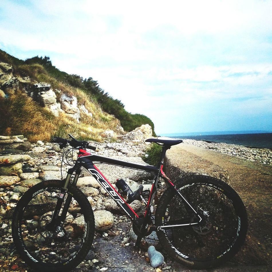 Training Bicycle Feltbike Beach