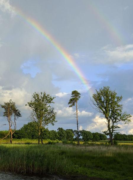 Rainbow in the Sky. Rainbow Rainbow Sky Rainbow Colours Rainbow🌈 Landscape Landscape_Collection Landscapephotography Landscape_lovers Nature Noordbrabant Roosendaal Thenetherlands Eyeemclouds Eyeemnaturephotography Naturephoto Naturephotography Naturephotographer Cloudscape