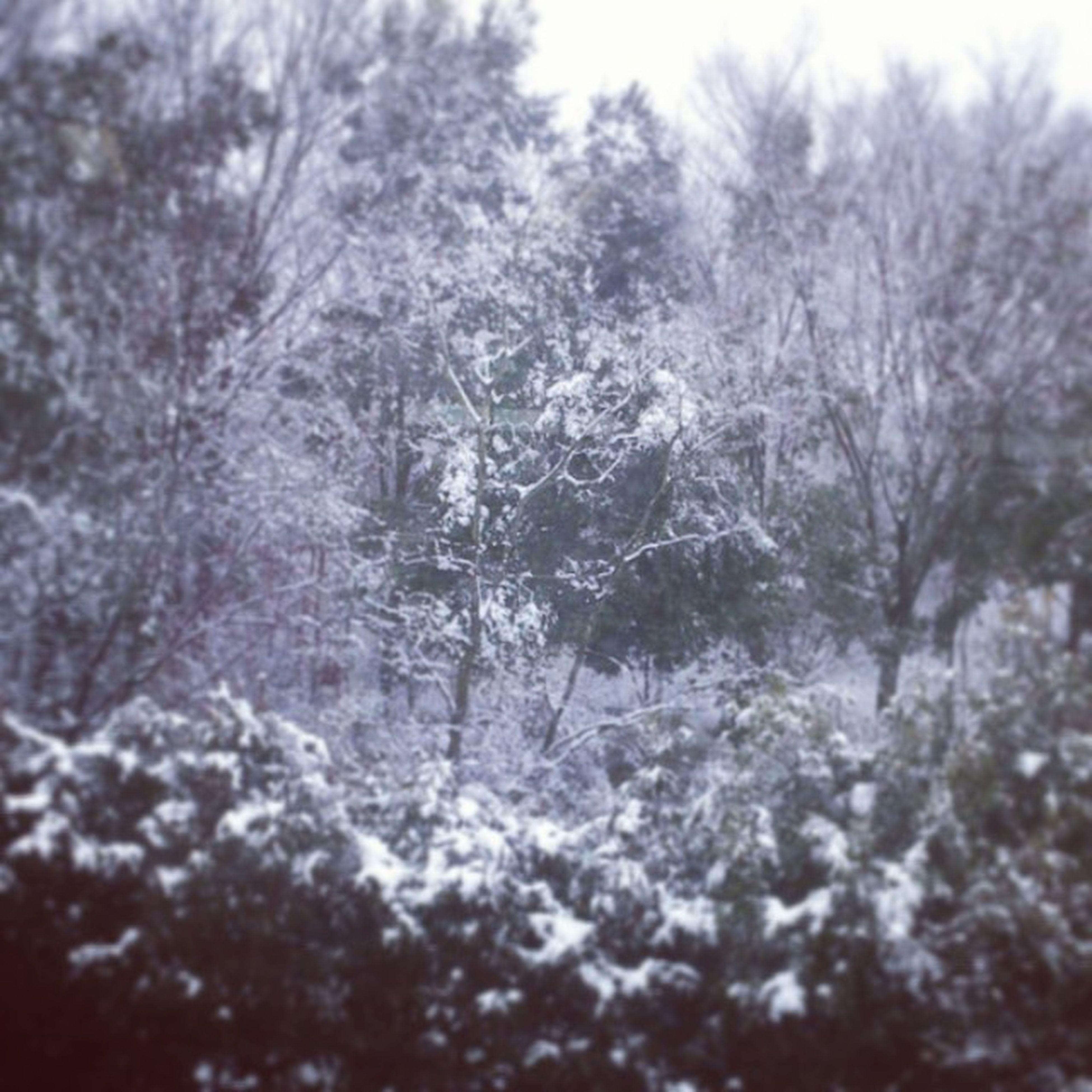 雪 教室より 若総 Snow 冬積もった寒い帰りたい綺麗腰痛い
