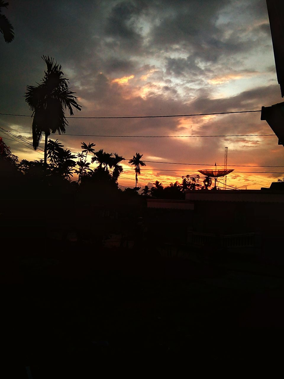 sunset, silhouette, tree, palm tree, sky, cloud - sky, nature, no people, beauty in nature, outdoors