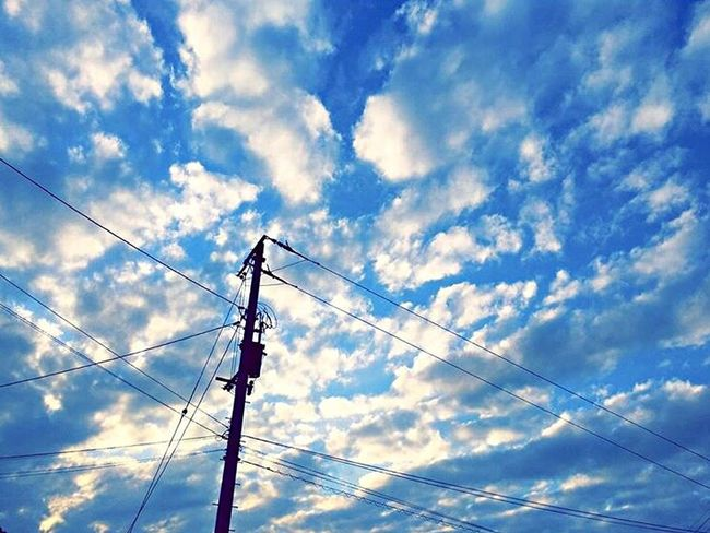 Japan Photography Electricity  Cable Power Supply Connection Sky Power Line  Low Angle View Cloud - Sky Technology No People Electricity Pylon Fuel And Power Generation Outdoors Day Nature 日本 空 電柱 景色 雲 青