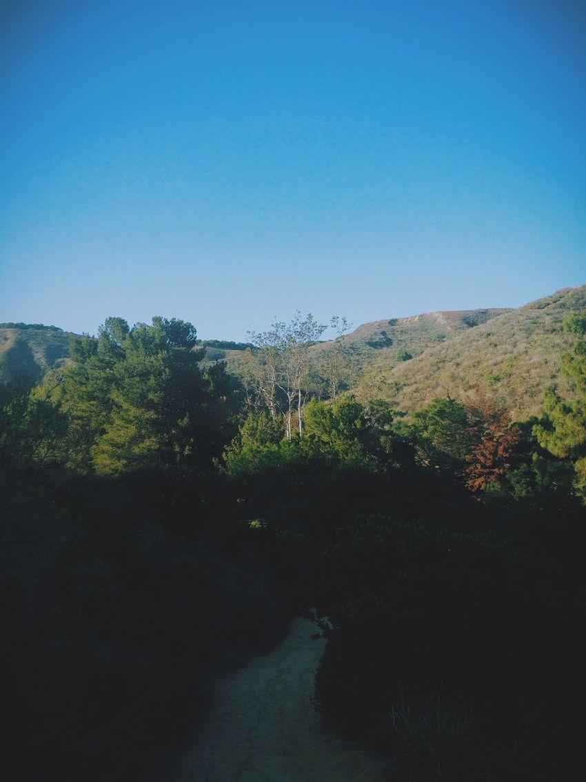 Hike at the park Myfirstpost Travel First Eyeem Photo Follow