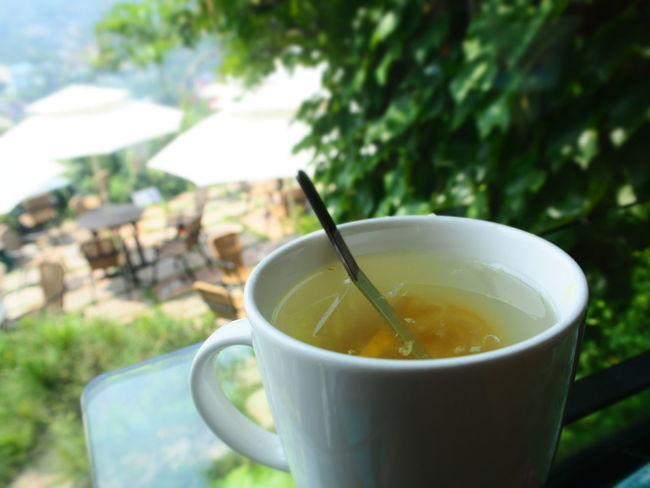 Baeksasil Valley Beverage Citric Citric Tea Drink Enjoying Life Enjoying The View Feeling Good Food And Drink Hot Drink Relax Relaxation Relaxing Relaxing Moments Relaxing Time South Korea