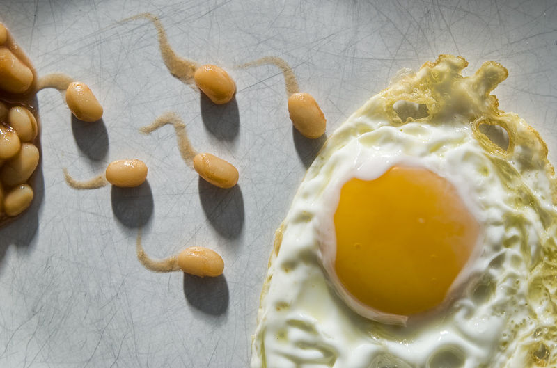 The Breakfast of Champions Beans Fried Egg Joke Life Birth Breakfast Close-up Concept Conception Egg Food Satire Sperm Tails Yellow Yoke