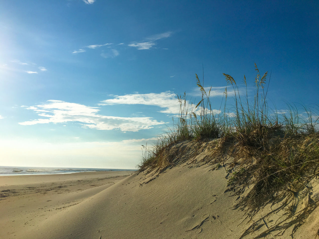 Sand dune with blue sky Beach Beauty In Nature Blue Cloud - Sky Day Growth Horizon Over Water Marram Grass Nature No People Outdoors Sand Sand Dune Scenics Sea Sky Tranquil Scene Tranquility Water