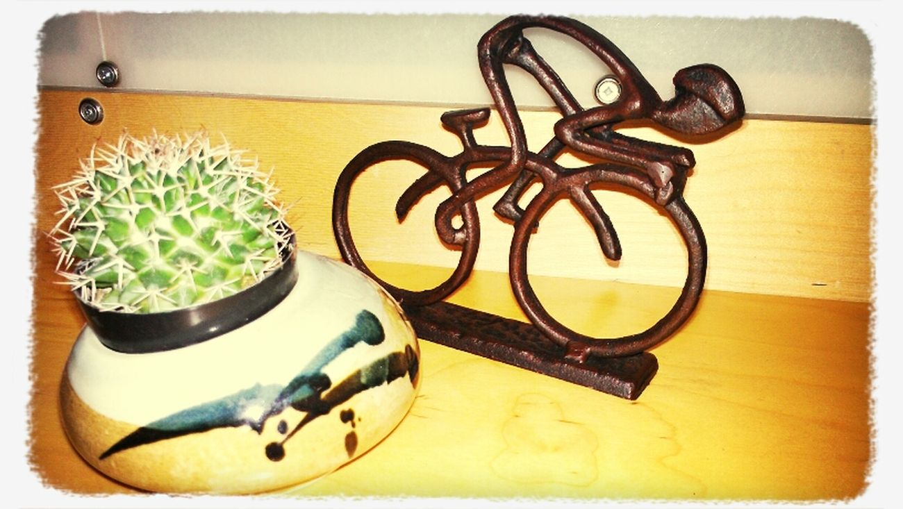my secret Santa gave me my adorable cyclest today!!! he is perfect next to my cactus.