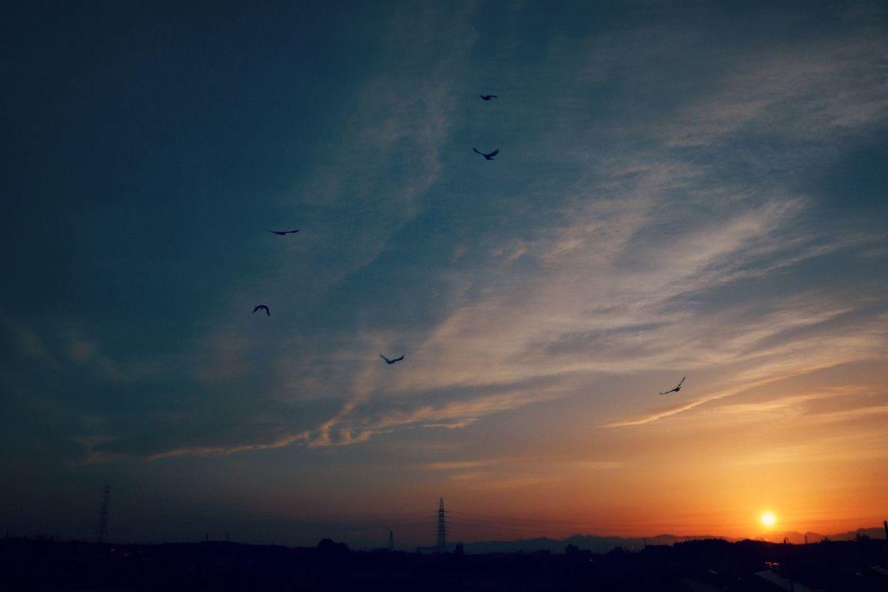 ゆうひ Sunset Sky 夕陽 夕日が綺麗だー! 夕日 Sunset_collection Sunsets