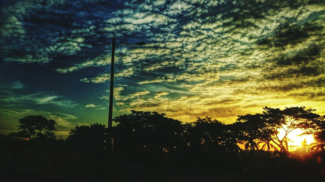 43 Golden Moments That beautiful morning sun.