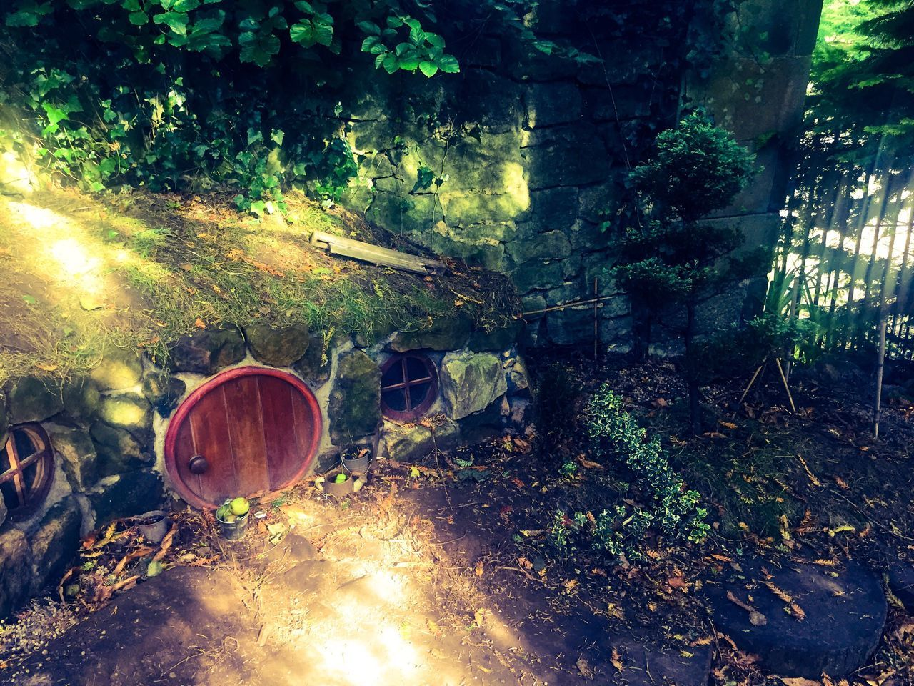 Fairy House Summer #summertime #sun #TagsForLikes.com #hot #sunny #warm #fun #beautiful #sky #clearskys #season #seasons #instagood #instasummer #photooftheday #nature #TFLers #clearsky #bluesky #vacationtime #weather #summerweather #sunshine #summertimeshine